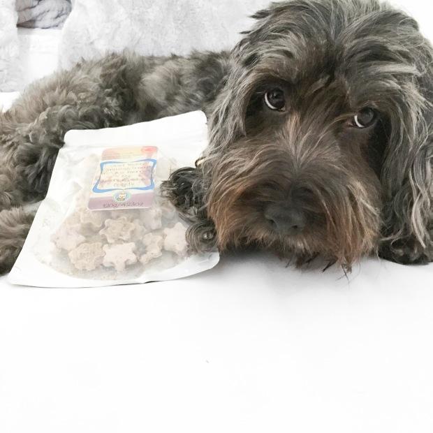 vegan dog treats
