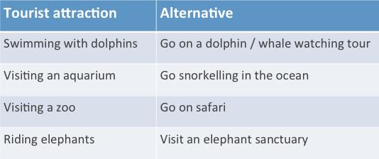 animal-tourist-attraction